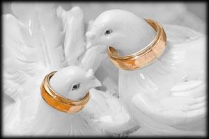 Годовщины свадьбы. Свадебные юбилеи. Свадебная фотография в Киеве. Фотограф на свадьбу